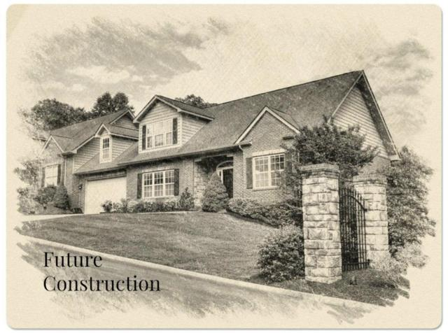 4224 Platinum Drive, Knoxville, TN 37938 (#1037400) :: Billy Houston Group