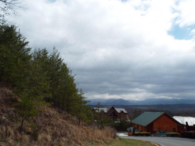 Lot 26 Blackthorn Trail, Sevierville, TN 37876 (#1037409) :: Billy Houston Group