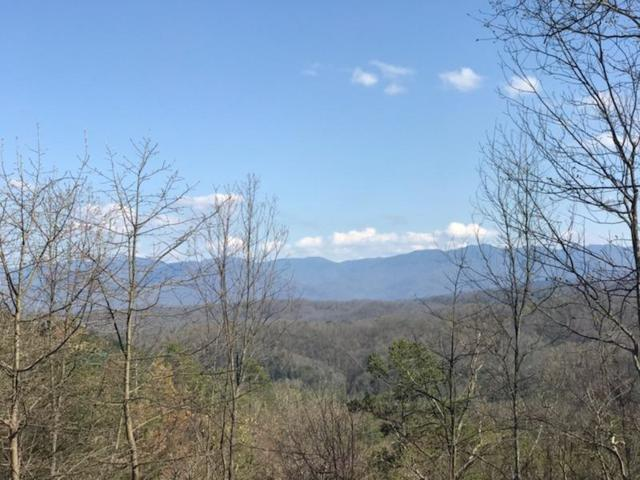 Lot 4 Fox View Rd, Sevierville, TN 37876 (#1037416) :: Billy Houston Group