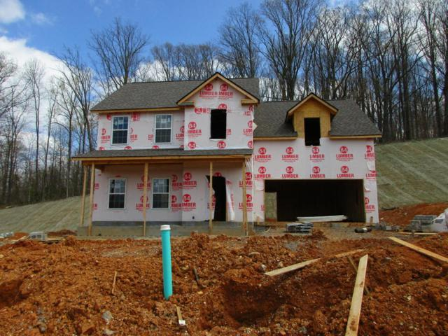 3134 Oakwood Hills Lane, Knoxville, TN 37931 (#1037574) :: Billy Houston Group