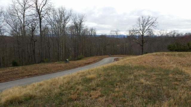 Summer Circle & Two Rivers Ln, LaFollette, TN 37766 (#1037635) :: Billy Houston Group