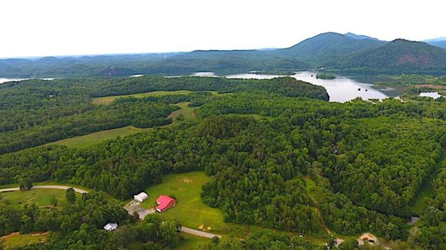Citico Rd, Vonore, TN 37885 (#1037705) :: Billy Houston Group