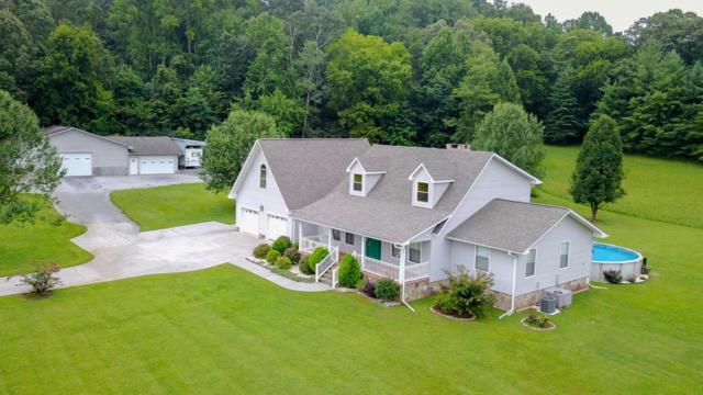 150 Goldenrod Lane, Friendsville, TN 37737 (#1038026) :: Billy Houston Group