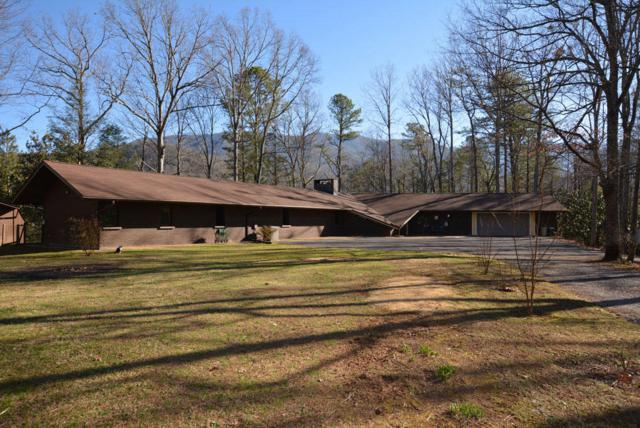 150 Hollow Rd, Cosby, TN 37722 (#1038077) :: Shannon Foster Boline Group