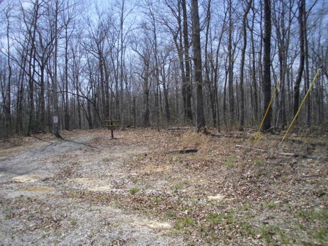 Spruce Creek Dr & Wildcat Road Rd, Jamestown, TN 38556 (#1038169) :: Shannon Foster Boline Group