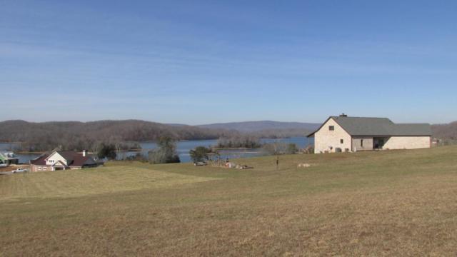 230 Majestic View Drive, Rockwood, TN 37854 (#1038183) :: Billy Houston Group