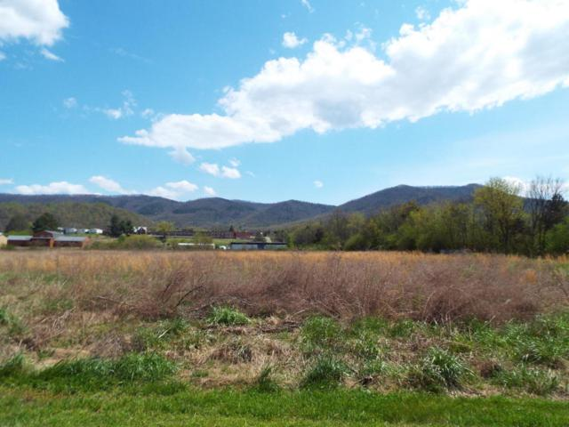 Lot 9 Padgett Mill Road, Cosby, TN 37722 (#1038303) :: Billy Houston Group