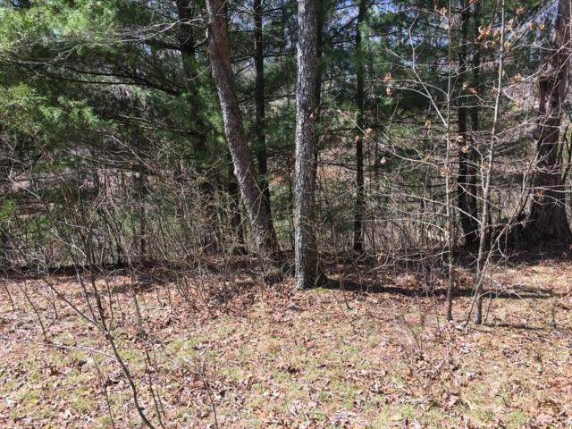 Woods Hollow Lane, Crossville, TN 38571 (#1038360) :: Realty Executives