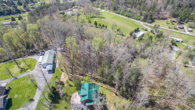 Lot 14 Dayne Drive, Sevierville, TN 37876 (#1038376) :: Billy Houston Group