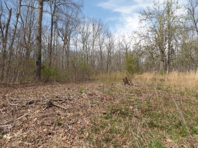 Lot 97 Sharon Circle, Crossville, TN 38572 (#1038382) :: Billy Houston Group