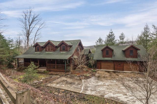 114 Turkey Ridge Rd, Rockwood, TN 37854 (#1038434) :: Shannon Foster Boline Group