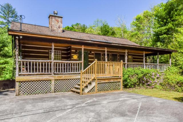 316 Rainbow Circle, Townsend, TN 37882 (#1038491) :: SMOKY's Real Estate LLC