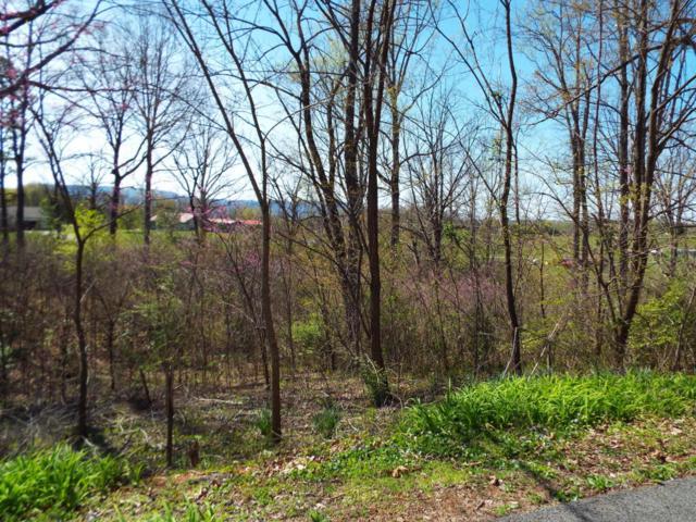 Lot 6 Farm Road, Newport, TN 37821 (#1038578) :: Billy Houston Group