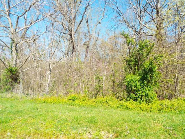 Lot 7 Farm Road, Newport, TN 37821 (#1038579) :: Billy Houston Group