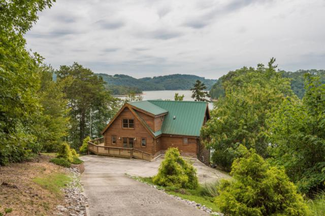 881 Lakeview Drive, Sharps Chapel, TN 37866 (#1038610) :: Billy Houston Group