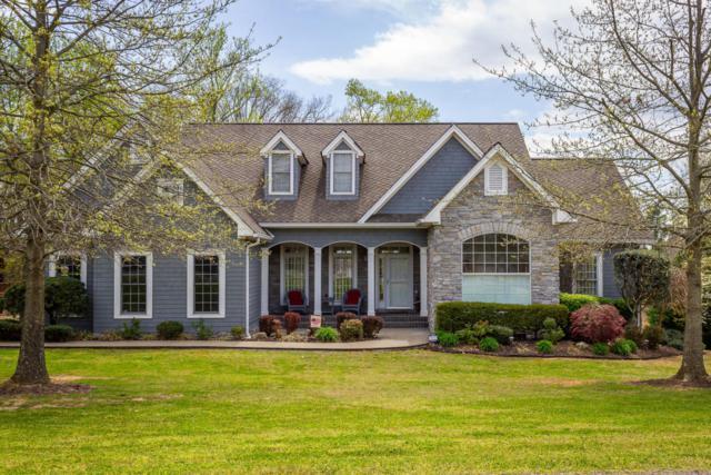 312 Seven Oaks Drive, Rutledge, TN 37861 (#1038615) :: Shannon Foster Boline Group