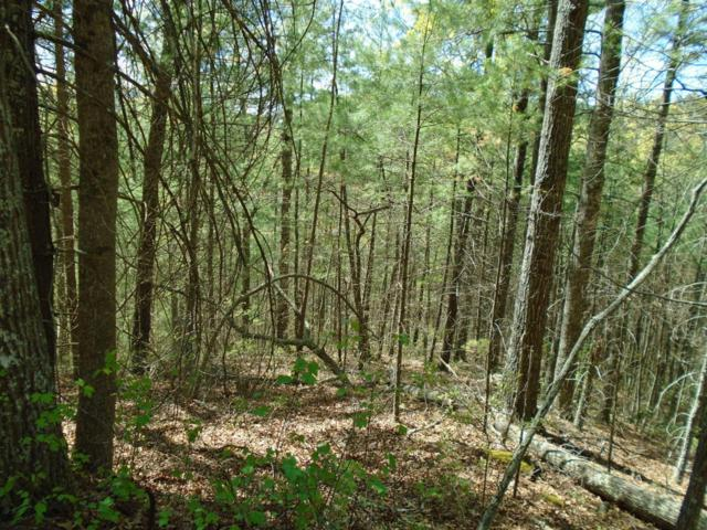 Address Not Published, Townsend, TN 37882 (#1038760) :: Billy Houston Group