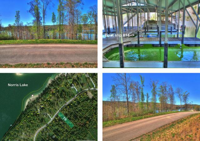 Lot 79 Hickory Pointe Lane, Maynardville, TN 37807 (#1038789) :: Shannon Foster Boline Group