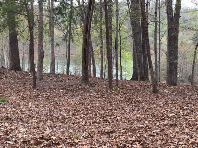 Big Pine Point, LaFollette, TN 37766 (#1038803) :: Billy Houston Group