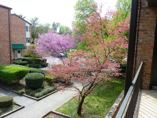 2718 Painter Ave Apt C109, Knoxville, TN 37919 (#1038818) :: SMOKY's Real Estate LLC