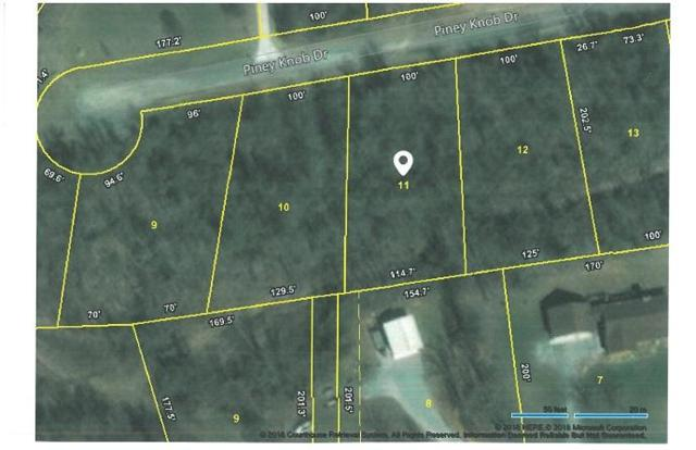 Lot 11 Piney View Drive, Spring City, TN 37381 (#1038873) :: Billy Houston Group