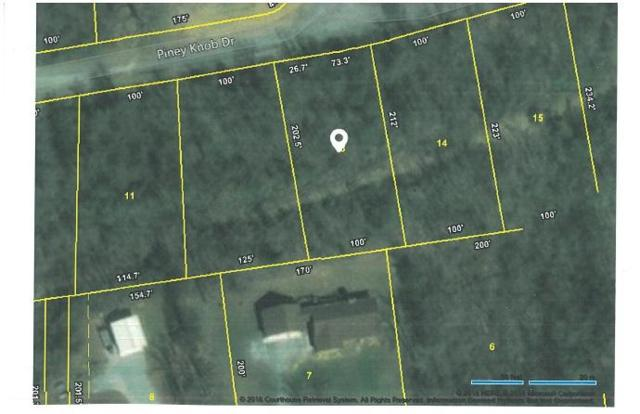 Lot 13 Piney View Drive, Spring City, TN 37381 (#1038878) :: Billy Houston Group