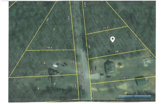 Lot 24 Piney Knob Drive, Spring City, TN 37381 (#1038974) :: Billy Houston Group