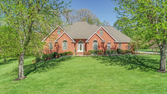 6039 Hidden Brook Lane, Knoxville, TN 37938 (#1038998) :: Billy Houston Group