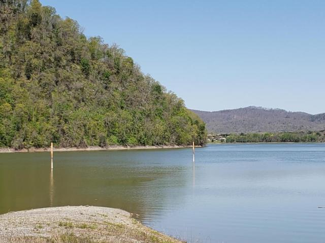 Lot 4 River Front Drive, Rogersville, TN 37857 (#1039053) :: Billy Houston Group