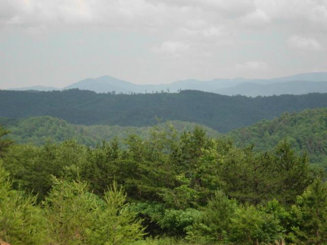 Bullet Mountain Drive, Tellico Plains, TN 37385 (#1039059) :: Billy Houston Group