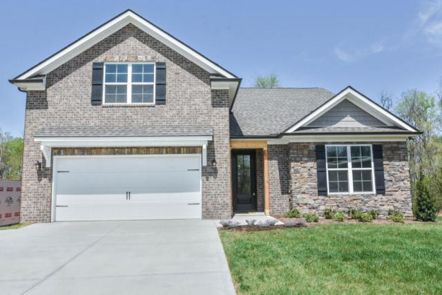 11867 Black Rd, Knoxville, TN 37932 (#1039067) :: Billy Houston Group