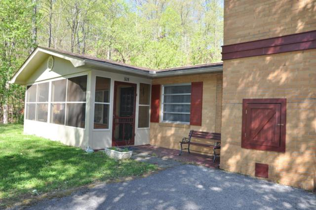 526 Cole Drive, Pigeon Forge, TN 37863 (#1039069) :: Billy Houston Group