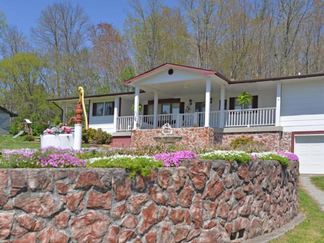 8328 Conner Rd, Powell, TN 37849 (#1039102) :: Billy Houston Group