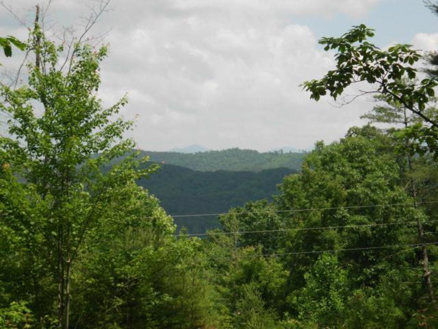 Bullet Mountain Drive, Tellico Plains, TN 37385 (#1039115) :: Billy Houston Group