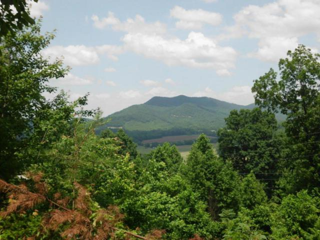 Bullet Mountain Drive, Tellico Plains, TN 37385 (#1039142) :: Shannon Foster Boline Group