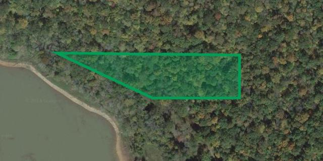 Peregrine Drive, Tazewell, TN 37879 (#1039155) :: CENTURY 21 Legacy