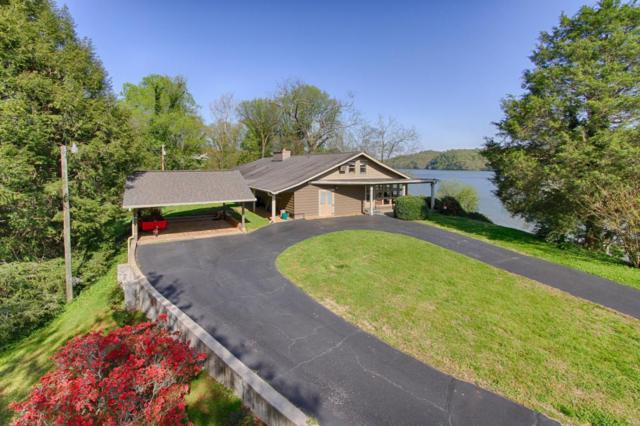8504 Badgett Rd, Knoxville, TN 37919 (#1039263) :: Billy Houston Group