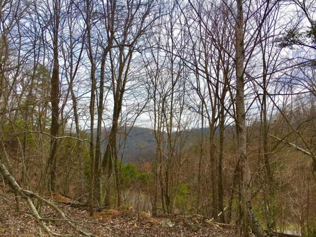 Lot 290 Bluff View Rd, New Tazewell, TN 37825 (#1039266) :: Billy Houston Group