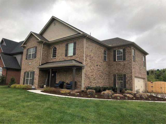 12210 Deer Crossing Drive, Knoxville, TN 37932 (#1039285) :: Billy Houston Group