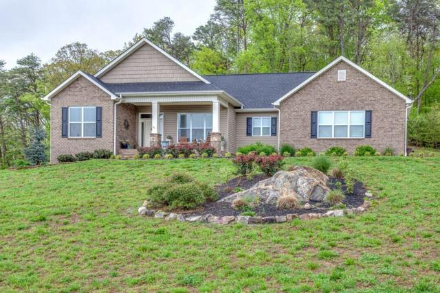 606 Peachtree Drive, Maryville, TN 37801 (#1039378) :: Billy Houston Group