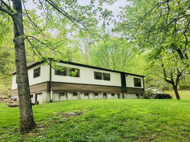 11833 Yarnell Rd, Knoxville, TN 37932 (#1039386) :: Billy Houston Group