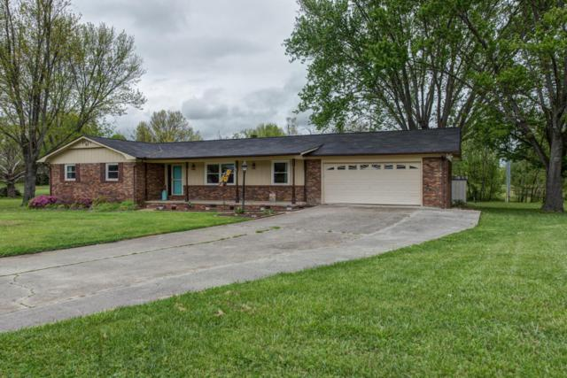 7512 Cathy Rd, Knoxville, TN 37938 (#1039392) :: Billy Houston Group