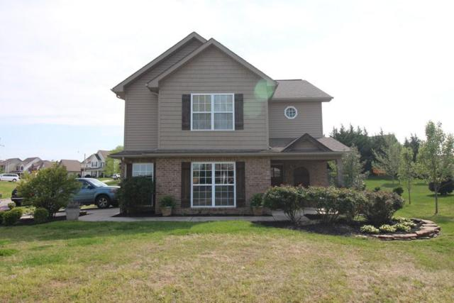 1143 Paul Lankford Drive, Maryville, TN 37801 (#1039429) :: Billy Houston Group