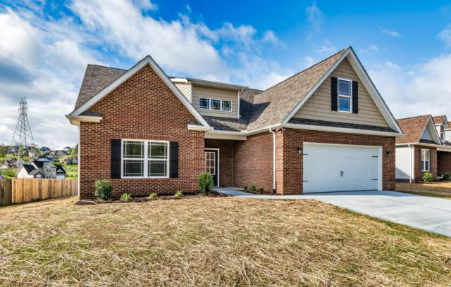 520 Greystoke Lane, Knoxville, TN 37912 (#1039445) :: Billy Houston Group