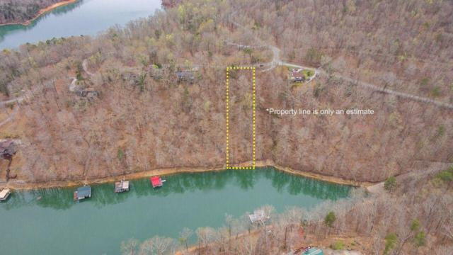 S Shorewood Drive, Caryville, TN 37714 (#1039514) :: Billy Houston Group