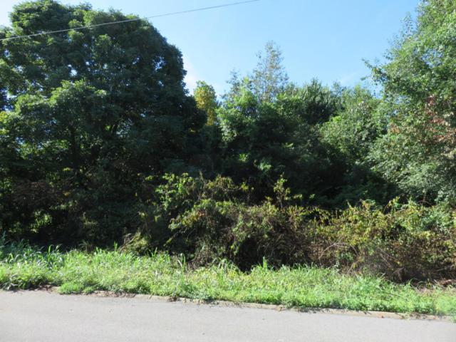 Lot #6 Beechwood Drive, Sweetwater, TN 37874 (#1039525) :: Billy Houston Group