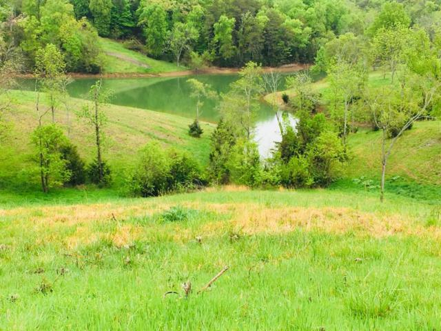 Lot 25 Mountain Lake Drive, Dandridge, TN 37725 (#1039537) :: Billy Houston Group