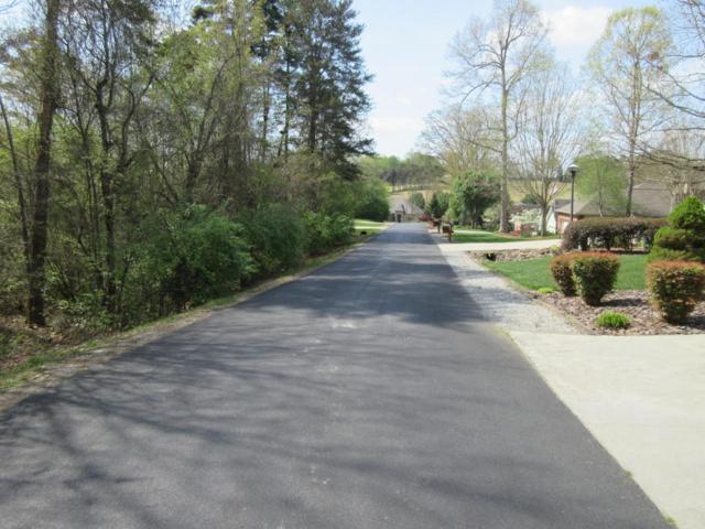 155 Daleyuhski Way, Loudon, TN 37774 (#1039658) :: Shannon Foster Boline Group