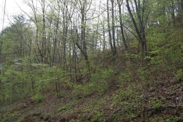 Lot#16 Eagle Pointe Way, Sevierville, TN 37876 (#1039720) :: Billy Houston Group