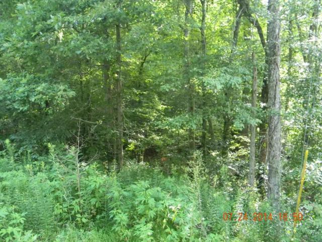 Tinch Town Rd., Jamestown, TN 38556 (#1039829) :: Billy Houston Group